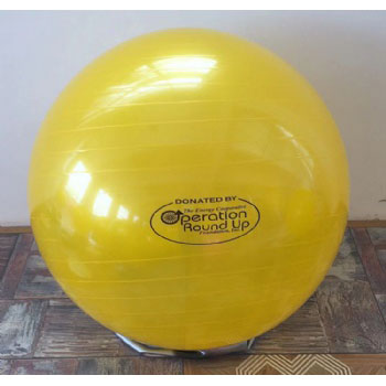 55cm 65cm 75cm ECO friendly Anti Burst Gym Fitness Exercise Yoga Ball Pilates Ball