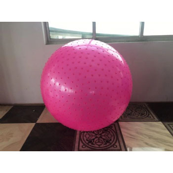 75cm Anti-burst Stability Gymnastic Exercise Yoga Ball