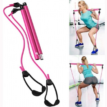 Resistance Trainer Band + Bar Kit Core System Portable Home Gym, Resistance Band and Bar Full Body Workout Improve Fitness, Build Muscle, Strength Exercise