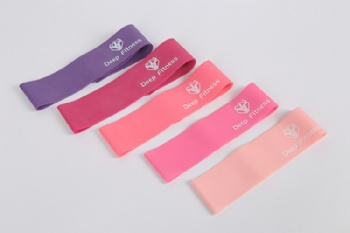 Stock Fitness Mini 12 inch Resistance Loop Bands set of 4 with carry bag